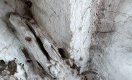 Grotte_Paolo Ippolito (3)_2117249