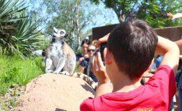 Madagascar__2424934